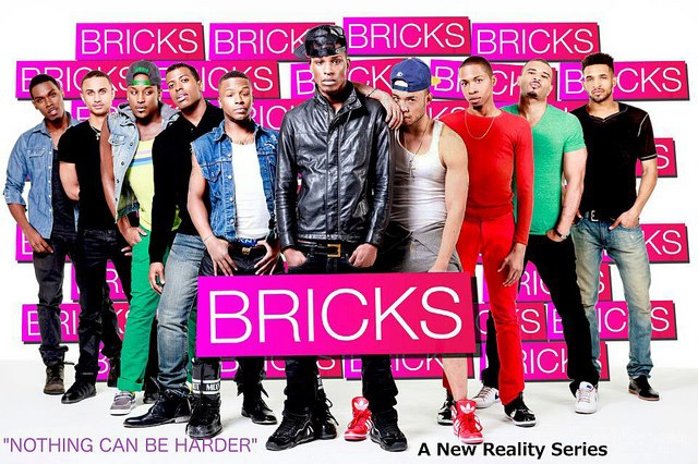 Bricks-Web series